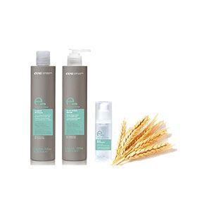 Collection of Frizz Control Products with Wheat